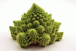 akciya-fibonacci